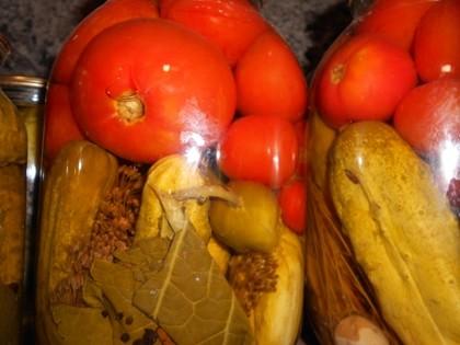 Маринуем «ассорти» — помидоры и огурцы