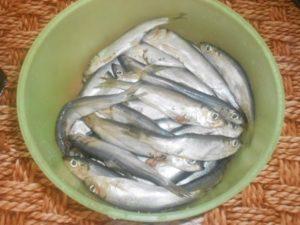 перебрать рыбу